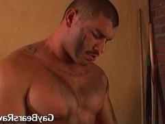 muscled gay bear gives his partner oral
